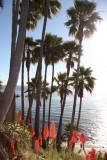 Laguna Beach - 12/28/13