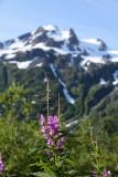 The Last Frontier... Alaska - Hiking of Alaska - 7/17/16