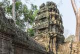 Ta Prohm temple, Siem Reap