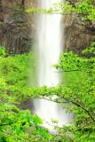 Latourell Falls, Columbia River Gorge National Scenic Area, Oregon