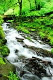 Wahkeena Falls Creek, Benson State Recreation Area, Columbia River Gorge National Scenic Area, Oregon