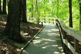 Heritage Trail, Mammoth Cave National Park, Kentucky