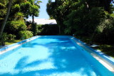Pool, Hemingway Home, Key West