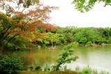Fall, pond, Rokuon-ji Temple, Kinkaku-ji,  Kyoto, Japan