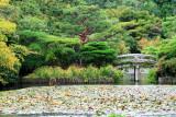 Bridge and lake, Ryōan-ji, The Temple of the Dragon at Peace, Kyoto, Japan