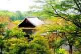 Tenryū-ji, Arashiyama, Kyoto, Japan