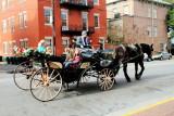 Historic Savannah Horse carriage tours
