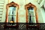 Windows, Savannah