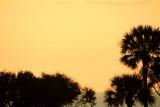 Sunrise screensaver