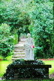 Statue amidst the north gardens at Middleton Place