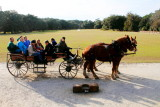 Horse carriage, Middelton Place