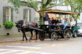Horse Carriage Ride, Charleston Historic District