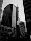 Sears Tower, Chicago, Illinois, Black and White
