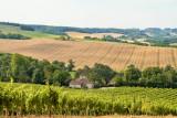 Wheat farm, Saint-Puy, France