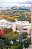 Millennium Park, Museum Campus, Fall Colors, Open House Chicago, 2014