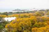Museum Campus, View from the Presidential Suite, Blackstone Hotel, Fall Colors, Chicago Open House 2014