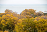 Lake Michigan, View from the Presidential Suite, Blackstone Hotel, Fall Colors, Chicago Open House 2014
