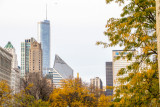Fall view of downtown Chicago