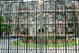 Glasgow university, Scotland