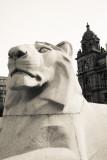 Lion statue, Glasgow, Scotland
