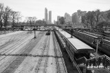 Train Station, Chicago, St. Patrick's Day, 2015, Black and White