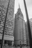First Methodist Church, Chicago, St. Patrick's Day, 2015, Black and White