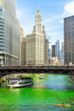 Wrigley Building, Chicago, St. Patrick's Day, 2015