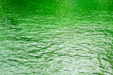 Green River, Chicago, St. Patrick's Day, 2015