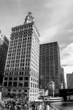 Wrigley Building, Chicago, St. Patrick's Day, 2015, Black and White