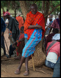A very tall Masai at the cattle market in Longorien