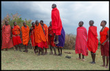 Masai men and boys dancing jumping - a true tourist attraction!!