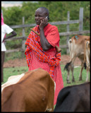 Masai man at the market