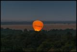 Masai Mara Hot air balloon starting up at dusk