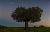 Moon over Extremadura