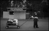 Waiting for Christmas - Gemla Småland