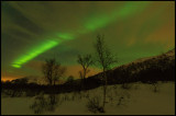 Northern light Kleppstadvattnet - Lofoten