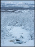 Still some open water near Bergfors (-20 degrees Celcius)