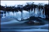 Ice formations under a log - Fyledalen Scania