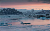 Dawn at Jökulsarlon with seals on the ice