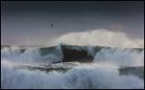 Big waves at Vik