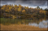 Small pond in northern Dalarna