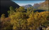 Autumn colors near Geiranger