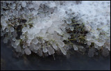 Ice in Gräsgård harbor - Öland
