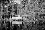 River-96.jpg