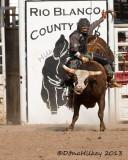 Meeker Range Call Rodeo 2013