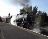 Steam on the North Wales Coast 2014