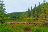 horseshoe lake HD5.JPG