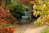 Batsford Arboretum - Autumn 2013