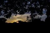 Day 8 Suburban Sunrise