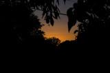Day 9 Suburban Sunset